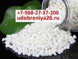 Diammonium Phosphate — Ammophos — NPK — Monokaliy — Urea - photo 4
